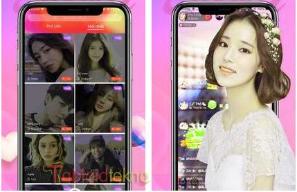 download bunny live mod apk
