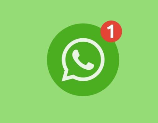 penyebab whatsapp tidak bisa video call
