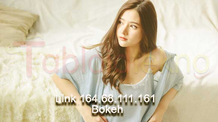 Link 164 68 111 161 Bokeh
